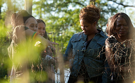 Group of African American women exploring Healcrest Urban Farm in the warm evening sunlight. Healcrest is located in the East End of Pittsburgh.