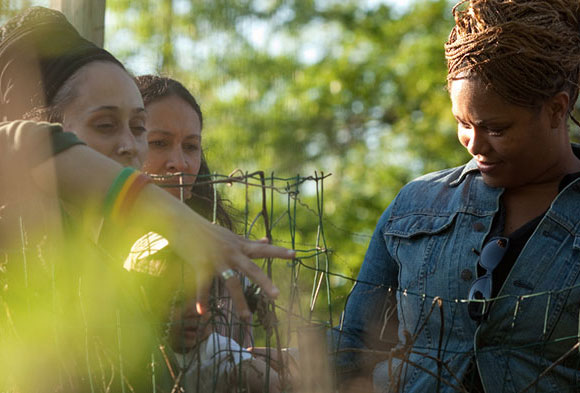 Group of African American women exploring Healcrest Urban Farm, which is located in the East End of Pittsburgh, in the warm evening sunlight.