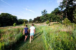 Two young men walking through a meadow in Schenley Park.